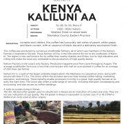 KenyaKaliluniAA.8.2019