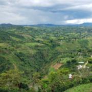 Imbachi Farm