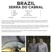 BrazilSerradoCabral.2.2020
